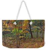 Ozark Forest In Fall 1 Weekender Tote Bag