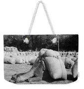 Pack Camel, C1910 Weekender Tote Bag