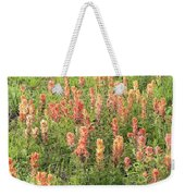 Paintbrush Beauties Weekender Tote Bag