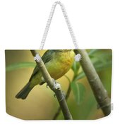 Painted Bunting Female Weekender Tote Bag
