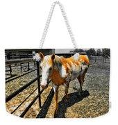 Painted Horse Weekender Tote Bag