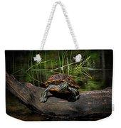 Painted Turtle Sunning Itself On A Log Weekender Tote Bag