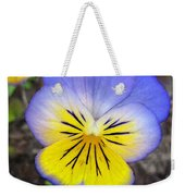 Painting Of Pansey Flower Weekender Tote Bag