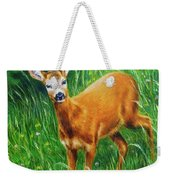 painting of young deer in wild landscape with high grass. Eye contact. Weekender Tote Bag