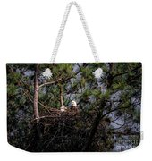 Pair Of Bald Eagles In Nest Weekender Tote Bag