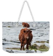 Pair Of Cows Grazing On The Burren In Ireland Weekender Tote Bag