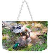 Pair Of Mallard Duck 4 Weekender Tote Bag