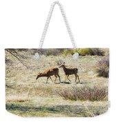 Pair Of Mule Deer Grazing At Chatfield Weekender Tote Bag
