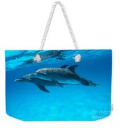 Pair Of Spotted Dolphins Weekender Tote Bag
