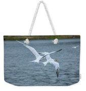 Pair Of Terns Weekender Tote Bag
