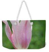 Pale Pink Tulip With Dew Drops Flowering Weekender Tote Bag