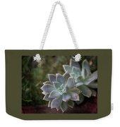 Pale Succulent On Artistic Background, Macro Weekender Tote Bag