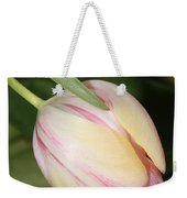 Pale Yellow And Pink Tulip Weekender Tote Bag