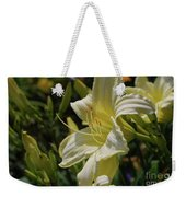 Pale Yellow Lily In A Garden Of Daylilies Weekender Tote Bag