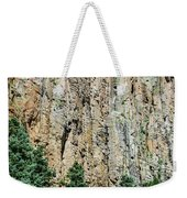 Palisades - Cimarron Canyon State Park - New Mexico Weekender Tote Bag