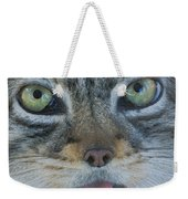 Pallas Cat Weekender Tote Bag