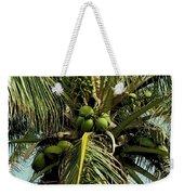 Palm 1 Weekender Tote Bag