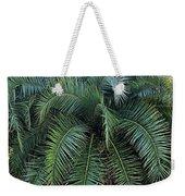 Palm Fronds Weekender Tote Bag