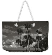 Palm Group In Florida Bw Weekender Tote Bag