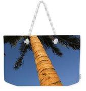 Palm In Blue Sky Weekender Tote Bag