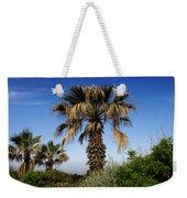 Palm Trees Growing Along The Beach Weekender Tote Bag