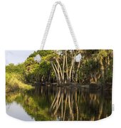 Palm Trees Reflections Weekender Tote Bag