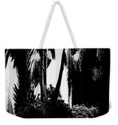 Palms And Arches Weekender Tote Bag