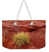 Pampas Grass In The Desert Torotoro National Park Bolivia Weekender Tote Bag