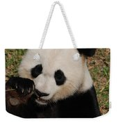 Panda Bear Eating Some Shoots Of Bamboo Weekender Tote Bag