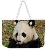 Panda Bear Eating Some Yummy Bamboo Shoots Weekender Tote Bag