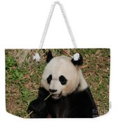 Panda Bear Holding On To Bamboo While Eating  Weekender Tote Bag