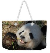 Panda Bear Laying On His Back And Eating Bamboo Weekender Tote Bag