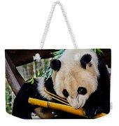Panda Bear Weekender Tote Bag by Robert Bales