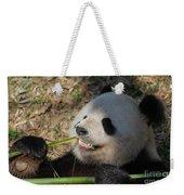 Panda Bear Showing His Teeth As He Munches On Bamboo Weekender Tote Bag