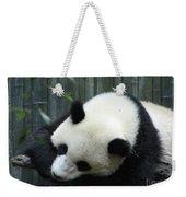 Panda Bear Sleeping On A Fallen Tree Branch Weekender Tote Bag