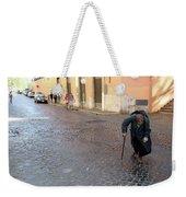 Panhandler Weekender Tote Bag