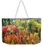 Panoply Of Autumn Color Weekender Tote Bag