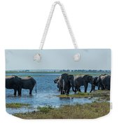 Panorama Of Elephant Herd Drinking From River Weekender Tote Bag