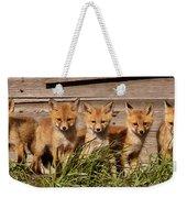 Panoramic Fox Kits Weekender Tote Bag