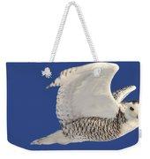 Panoramic Prairie Snowy Owl  Weekender Tote Bag