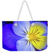 Pansy Close-up Square Weekender Tote Bag
