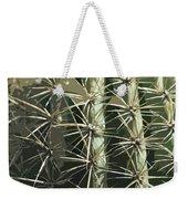 Paper Cactus Weekender Tote Bag