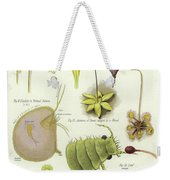 Parasites And Insectivorous Plants Weekender Tote Bag