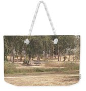 Park Near The Source Of The Yarkon River Weekender Tote Bag