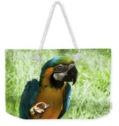 Parrot Eating Nut Weekender Tote Bag