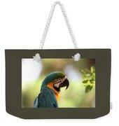 Parrot's Eye Weekender Tote Bag