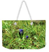 Parry's Mountain Gentian Weekender Tote Bag