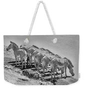 Party Of Eight  6973bw Weekender Tote Bag