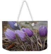 Pasque Flower Watercolor Weekender Tote Bag