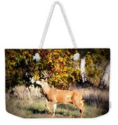 Passing Buck In Autumn Field Weekender Tote Bag
